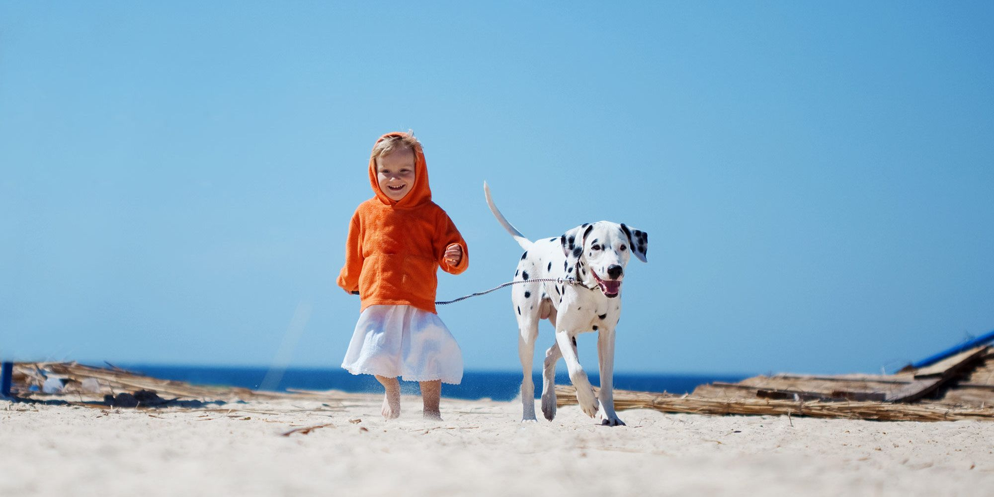 girl with dog on the beach