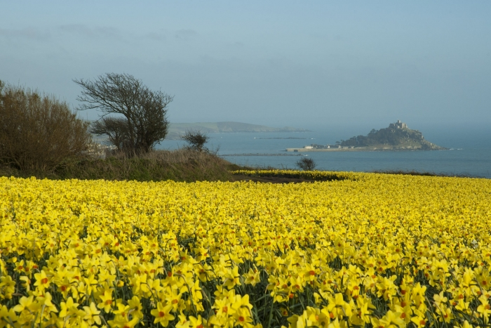 Mounts Bay: Credit Adam Gibbard, Visit Cornwall