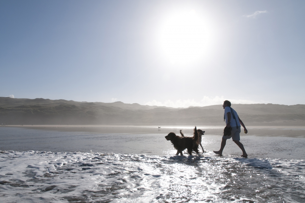 dog Walker - Matt Jessop for Visit Cornwall
