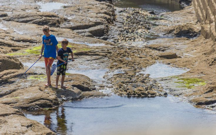 Rockpooling in Porthleven